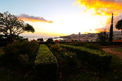 Panorama de Funchal de point de vue Vila Guida Photographie stock