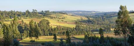panorama de 180 grados del campo etíope Imagenes de archivo