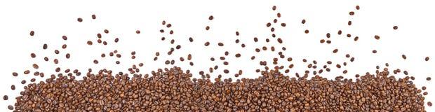Panorama de grains de café image libre de droits