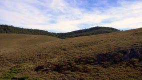 Panorama de Horton Plains National Park en Sri Lanka metrajes
