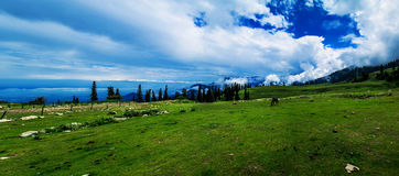 Panorama de Kashmir do vale de Gulmarg Foto de Stock Royalty Free