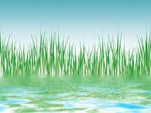 Panorama de lámina ilustrado de la charca Imagen de archivo libre de regalías