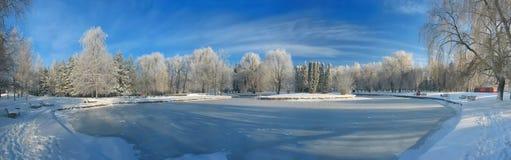 Panorama de l'étang congelé Photographie stock