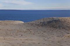 Panorama de l'île de Magdalena Image libre de droits