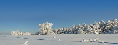 Panorama de l'hiver Images stock