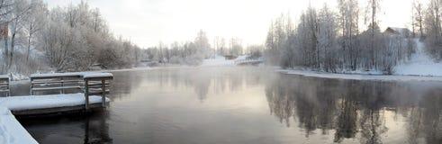 Panorama de l'hiver Image stock