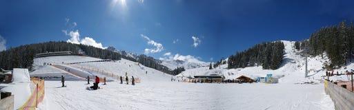 Panorama de l'hiver Images libres de droits