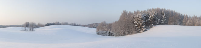 Panorama de l'hiver de Beautyful Photo stock