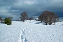 Panorama de l'hiver de Bulgarie Photos libres de droits