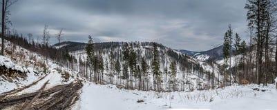 Panorama de l'horizontal de l'hiver dans les montagnes photographie stock