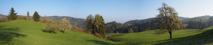 Panorama de la aldea Appenzell Suiza de la granja Foto de archivo libre de regalías