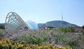 Panorama de la ciudad de Tbilisi Fotos de archivo