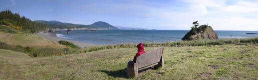 Panorama de la costa costa de Oregon. Fotos de archivo libres de regalías