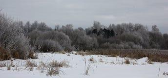 Panorama de la costa del invierno Imagen de archivo libre de regalías