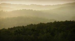 Panorama de la ducha de lluvia Imagenes de archivo