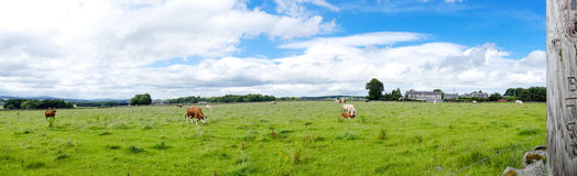 Panorama de la granja del campo foto de archivo libre de regalías
