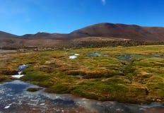 Panorama de la laguna de las montañas y del lago de Bolivia Foto de archivo
