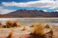 Panorama de la laguna de las montañas y del lago de Bolivia Fotografía de archivo libre de regalías