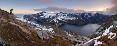 Panorama de la montaña en Noruega, Lofoten - Moskenesoya imagenes de archivo