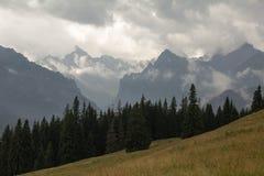 Panorama de la montagne images libres de droits