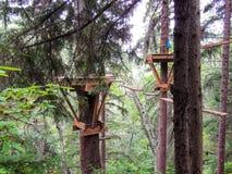 Panorama de la pista de senderismo de Skagway Alaska de Forest Trees Zipline Adventure Course Imágenes de archivo libres de regalías