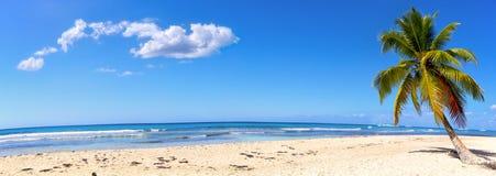 Panorama de la playa de la arena fotos de archivo libres de regalías