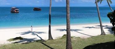 Panorama de la playa tropical con la sombra del coco en el blanco imágenes de archivo libres de regalías