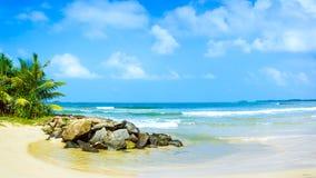 Panorama de la playa tropical en Sri Lanka. Imagen de archivo libre de regalías