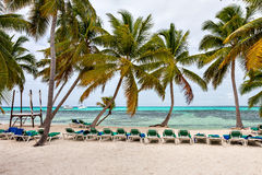 Panorama de la playa y del mar del Caribe con las palmeras Foto de archivo libre de regalías