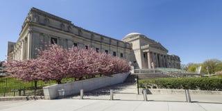 Panorama de la primavera del museo de Brooklyn imagen de archivo