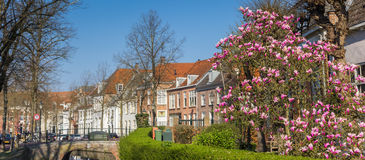Panorama de la rue de Zuidsingel à Amersfoort Images libres de droits