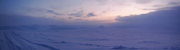 Panorama de la tundra del invierno (Siberia del norte) Imagenes de archivo