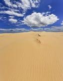 Panorama de la vertical del día de la duna de arena Imagenes de archivo
