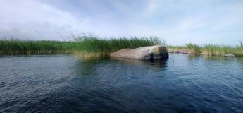 Panorama de lac avec des roseaux Photographie stock