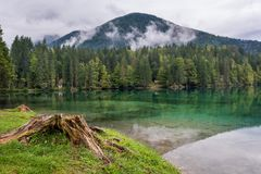 Panorama de lac forest Photographie stock