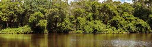 Panorama de lac moccasin Image libre de droits