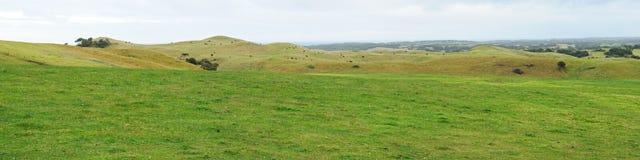Panorama de las colinas de las tierras de labrantío Imágenes de archivo libres de regalías