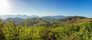 Panorama de las colinas de los viñedos de la península de Crimea Fotografía de archivo libre de regalías