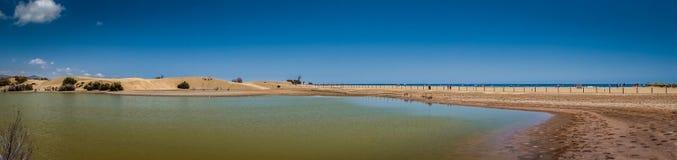 Panorama de las dunas y del mar de arena Fotografía de archivo