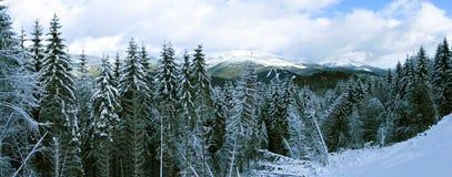Panorama de las montañas de la nieve Foto de archivo libre de regalías