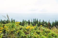 Panorama de las montañas de Ural Imagenes de archivo