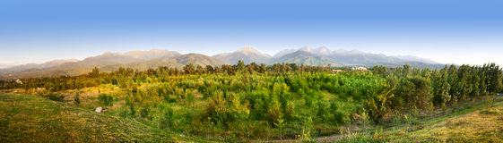 Panorama de las montañas de Zaili Alatau en Kazakhstan foto de archivo libre de regalías