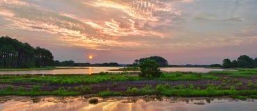 Panorama de lever de soleil de Chincoteague Photographie stock libre de droits