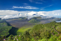 Panorama de los volcanes del soporte Bromo y de Batok Imágenes de archivo libres de regalías