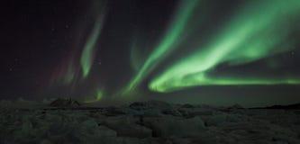 Panorama de lumières nordiques Photographie stock