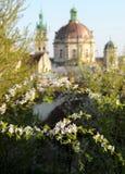 Panorama de Lviv dans le temps de samer, Ukraine Photos stock