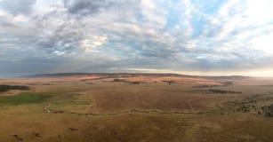 Panorama de Mara de masai à l'aube Photographie stock libre de droits