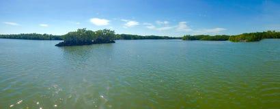 Panorama de marais Image libre de droits