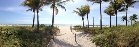 Panorama de Miami Beach Fotos de Stock Royalty Free