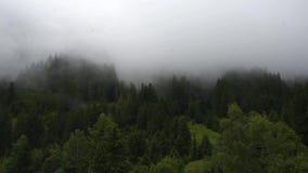 Panorama de montañas verdes con las nubes de lluvia almacen de metraje de vídeo